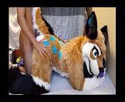 FreyaShibe - Doggy Fun from furries